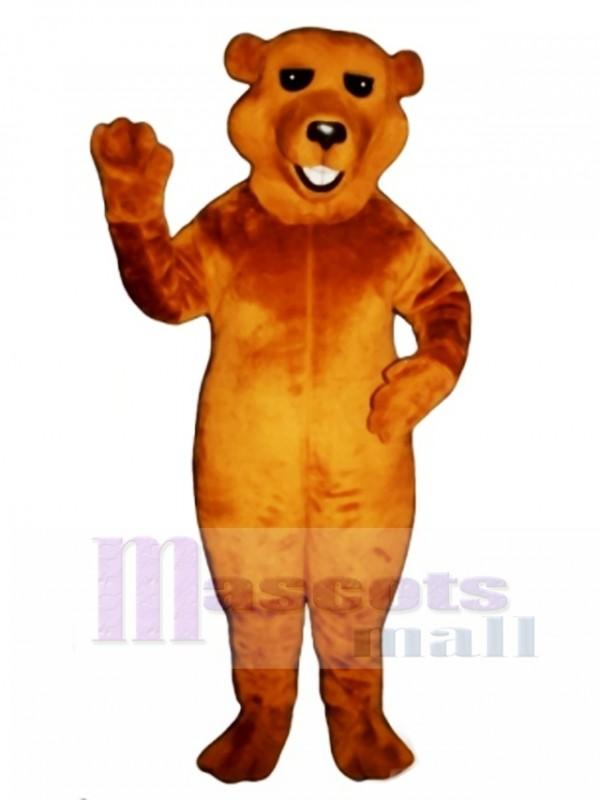 New Barry Bear Mascot Costume