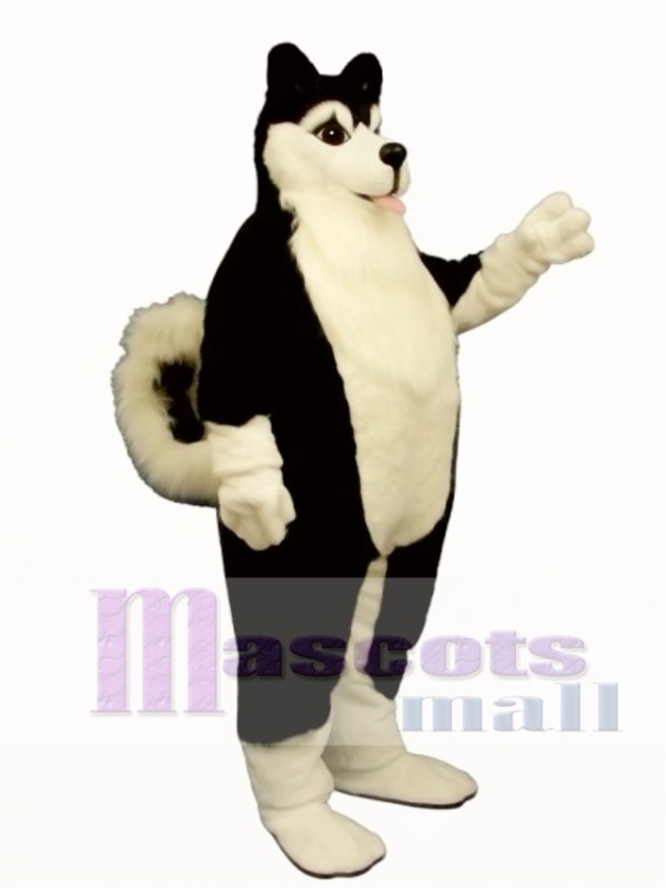 Cute Fat Husky Dog Mascot Costume