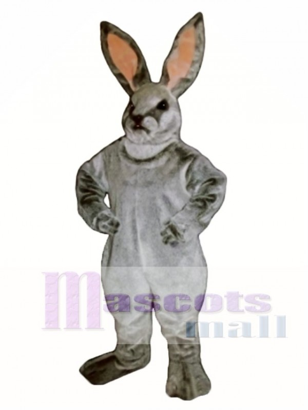 Easter Jack Bunny Rabbit Mascot Costume