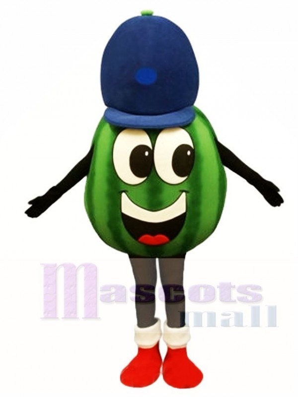 Madcap Watermelon Mascot Costume Fruit