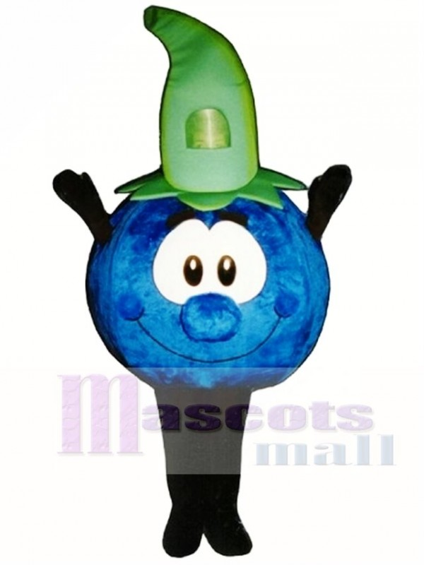 Bobby Blueberry Mascot Costume