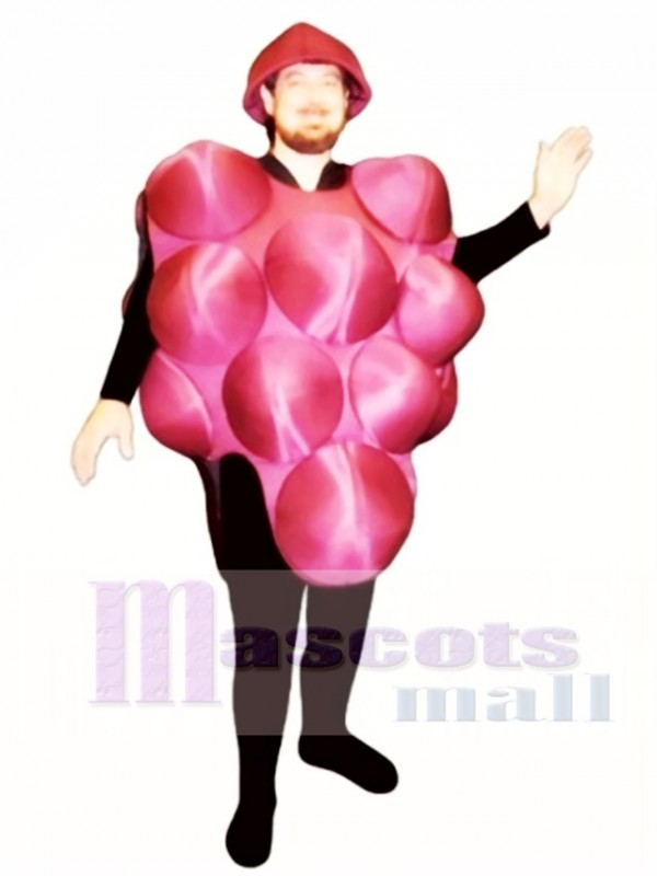 Grapes Mascot Costume Fruit