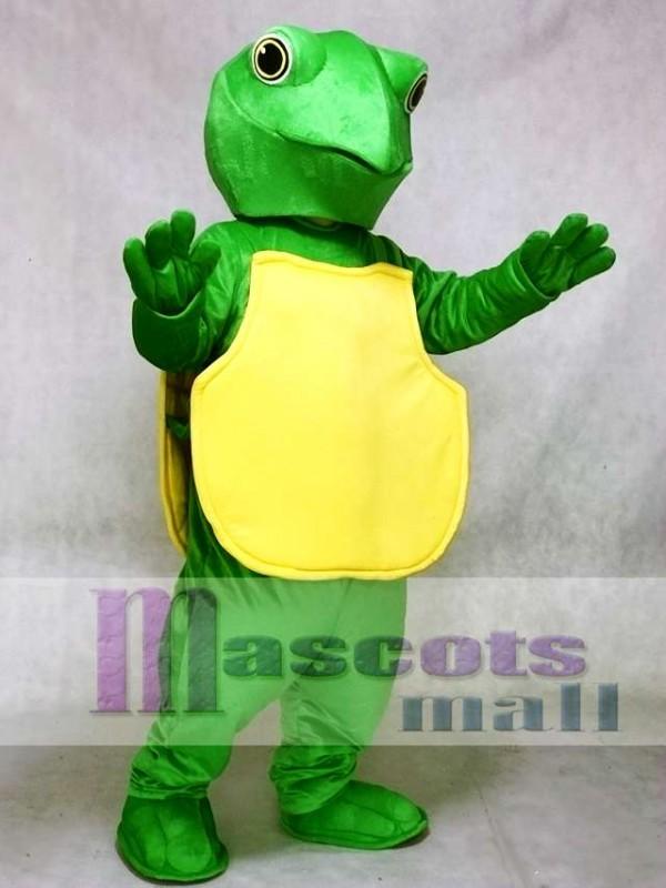 Green Turtle Mascot Costume
