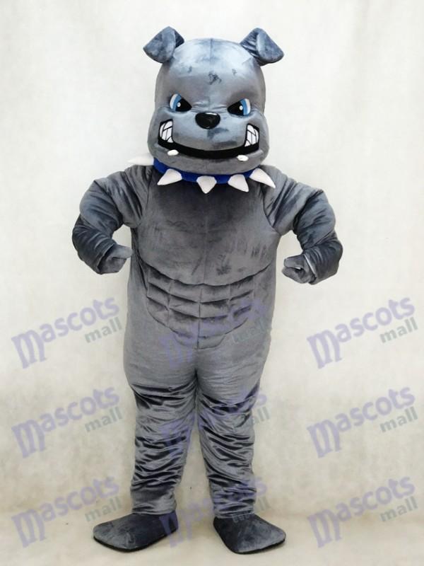 New Grey Bulldog Mascot Costume Animal