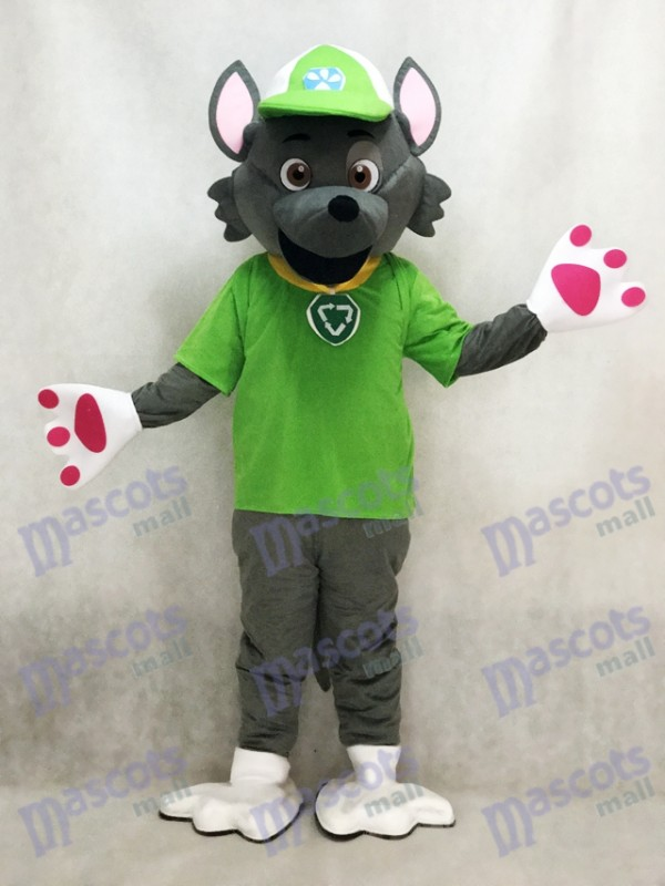 Paw Patrol Ecology Pup Rocky Mascot Costume Anime