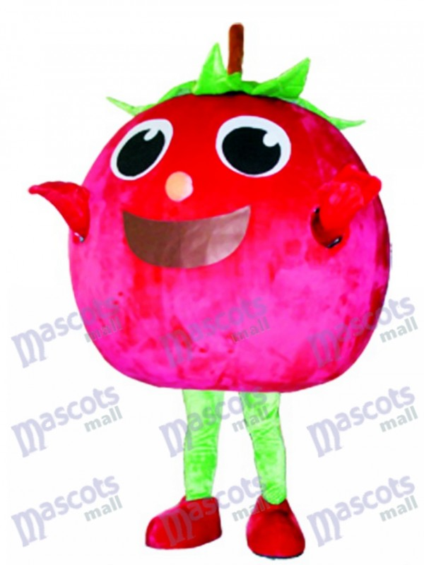 Red Tomato Mascot Costume
