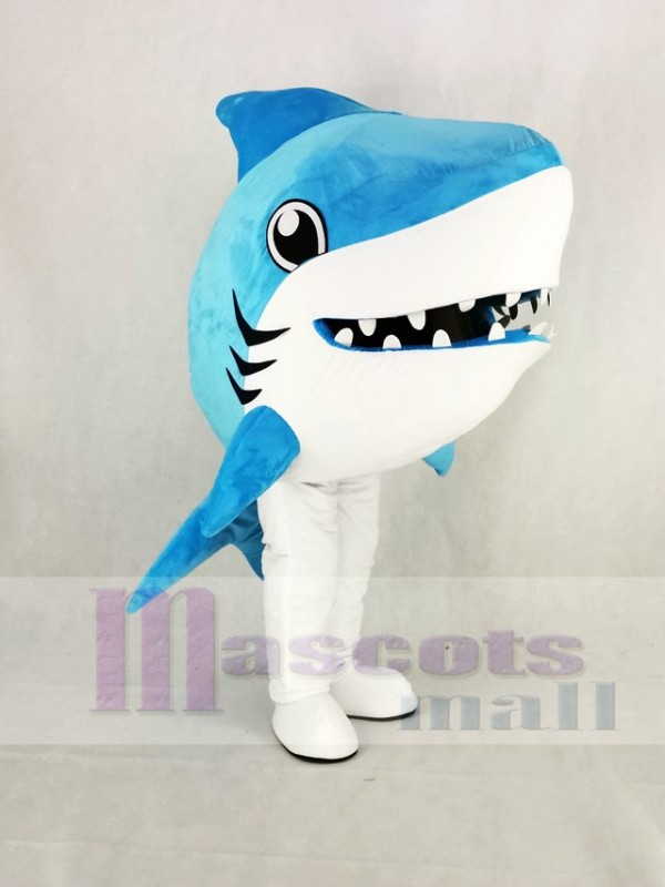 Cute Blue Whale Shark Mascot Costume Cartoon