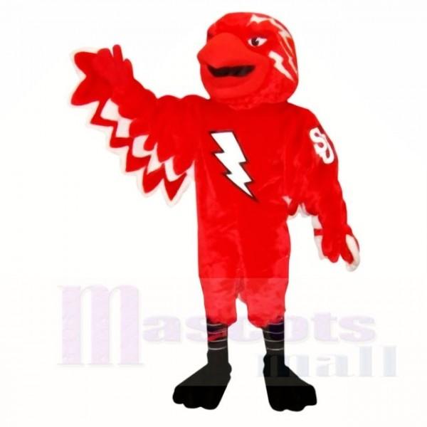 St John Thunderbird Mascot Costumes School